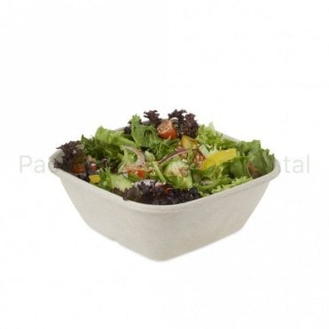 1000ml Bagasse Salad Container