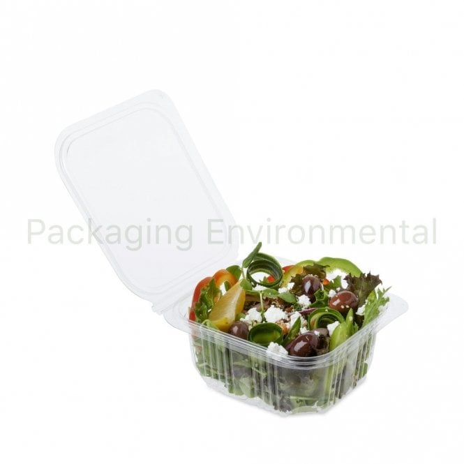 500ml Salad Container