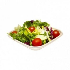 500ml Bagasse Salad Container