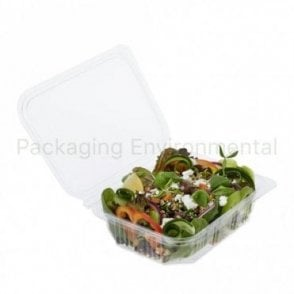 600ml Salad Container